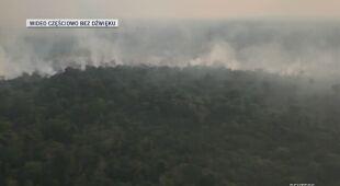 Wylesianie Amazonii nie ustępuje